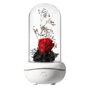 Glass Rose Essential Oil Diffuser