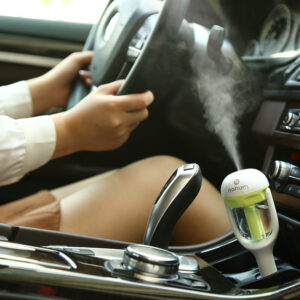 Pleasant Drive Home Car Essential Oil Diffuser