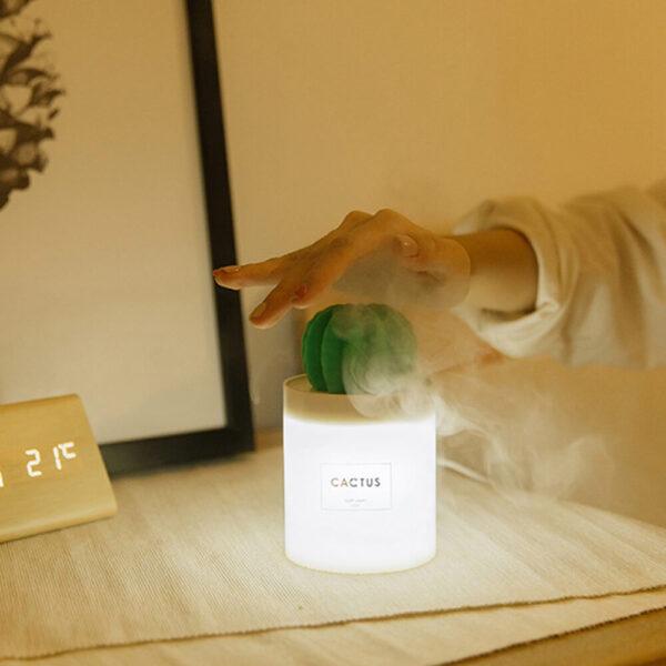 Cactus Essential Oil Diffuser