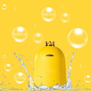Queen's Fragrance Oil Diffuser