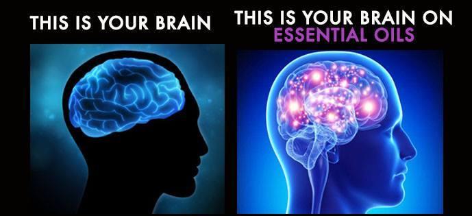 brain on essential oils